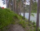 берег реки Катунь