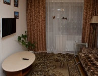 1-комнатная квартира на Дзержинского 20 (№ 554)