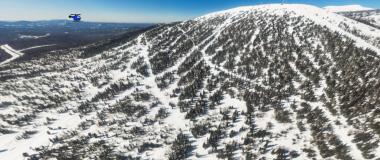 Леса Панорамы (правая)