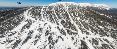 Леса Панорамы (левая)